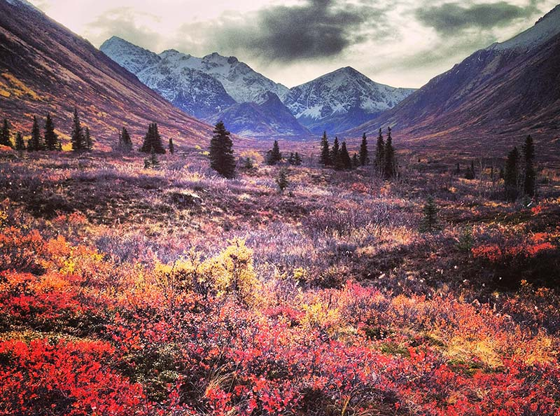 Life in Alaska :: Photo Gallery (October)